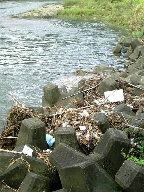 ふるさと清掃運動会in保津川